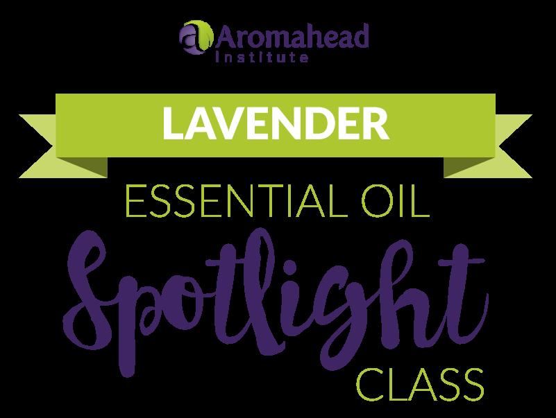 lavender_spotlight-1